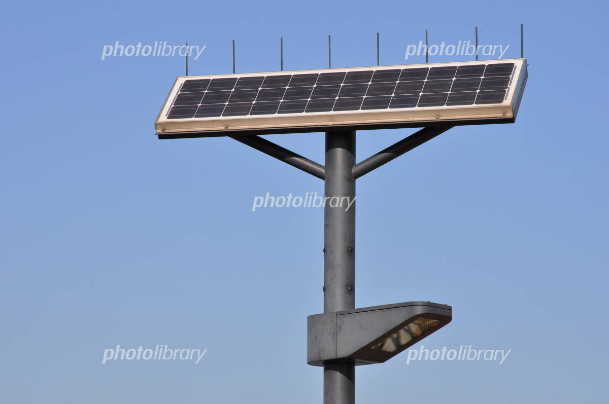 Street lights that utilize solar panels Photo