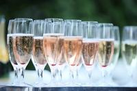 Champagne Stock photo [1760608] Glass