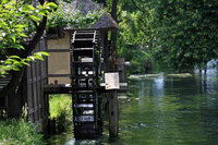 Spring and Watermill Stock photo [1852170] Chuan