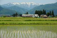 Yamagata Railway Flower Nagai Line Stock photo [1852242] Yamagata
