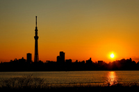 I face the Tokyo Sky Tree and building the city and the sunset than Kawahara of Arakawa stock photo