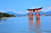 Miyajima vermilion torii stock photo