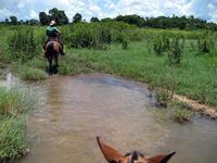 From horseback of Brazil Bonito Stock photo [1974969] Bonito