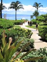 Maui Stock photo [2070867] Hawaii