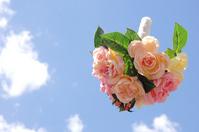 Bouquet toss Stock photo [2072847] Bouquet