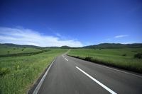 One road and the center line Stock photo [2074913] Vast