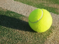 Coat and tennis ball Stock photo [2171593] Tennis