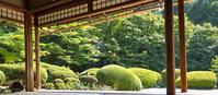 Shisen-dō garden Stock photo [2171911] Japanese