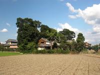 Landscape of a windbreak farmers Stock photo [2172638] Windbreaks