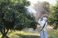 Pesticide spraying Stock photo [2306745] Agricultural