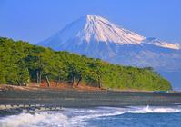 Landscape from Miho coast stock photo