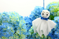 Shaved and hydrangea are Teru Stock photo [2431423] Rainy