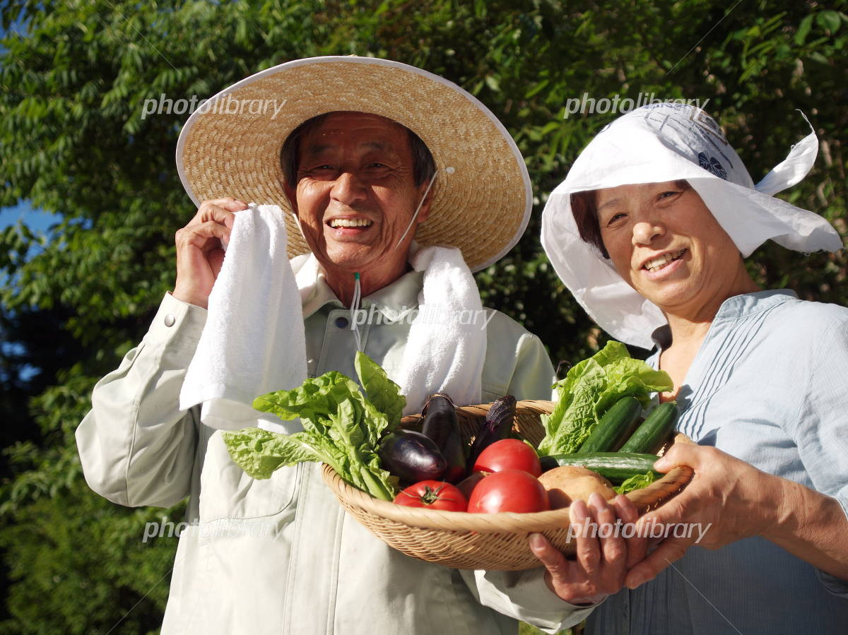Senior couple of smile with vegetables Photo
