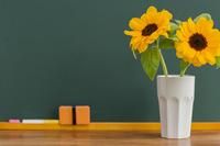 Blackboard and sunflower Stock photo [2551824] Blackboard