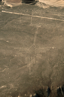 Nazca geoglyphs of hummingbird Stock photo [2555675] Peru