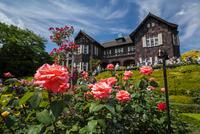 Of the old Furukawa garden rose garden and mansion Stock photo [2556460] Kyu-Furukawa