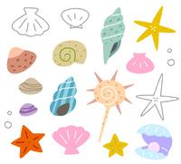 Sea shells [2658649] Sea