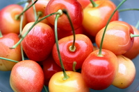 And cherries Stock photo [2660103] And