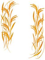 US poster white [2663900] Rice