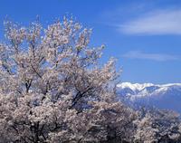 長野県の写真素材