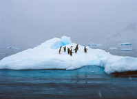 Antarctic iceberg diene-to-Penguin Stock photo [2746539] Landscape
