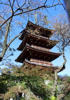 Uenokan'eiji five-story pagoda of Stock photo [2828255] Ueno