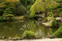 Japanese garden Hiratsuka comprehensive park Stock photo [2829036] Japanese