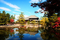 Fall of Todaiji Temple stock photo