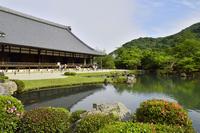 World Heritage Tenryuji stock photo