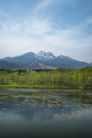 Imori pond early spring and Myoko Stock photo [2918776] Imori