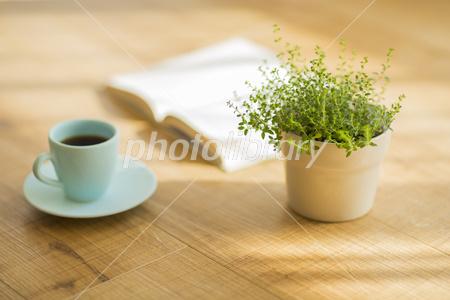 Coffee and books and houseplants Photo