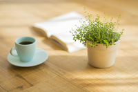 Coffee and books and houseplants Stock photo [2995087] Coffee