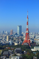 Shiba Park Tokyo Tower Stock photo [3003068] Tokyo