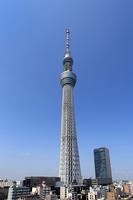 Tokyo Sky Tree Stock photo [3175561] Tokyo