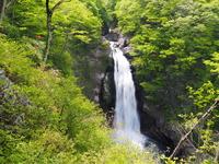 Fresh green of Akiu Great Falls Stock photo [3175805] Waterfall