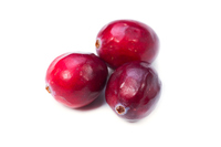 Cranberry Stock photo [3178821] Giant