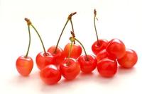Cherries Sato Nishiki white background Stock photo [3180614] cherry