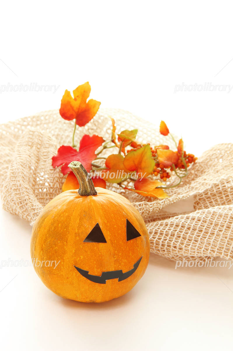 Halloween Jack O Lantern Photo
