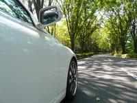 Sunlight and car (tree-lined street) Stock photo [3285041] Sunbeams