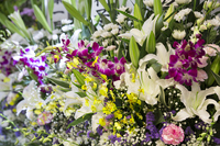 Of funeral flowers Stock photo [3289044] Funeral
