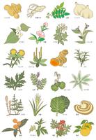 Herbal variety [3289667] Crude