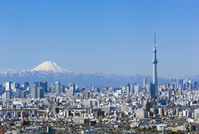 The views of the Mount Fuji and Tokyo Sky Tree and downtown streets Stock photo [3290945] Mt.