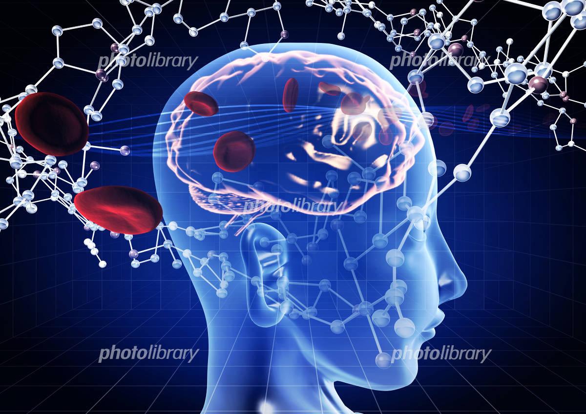 Brain erythrocyte molecular model image イラスト素材