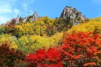 Autumn leaves of Sounkyo Stock photo [3379048] Sounkyo