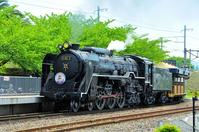 Steam locomotive steam issue of plum alley Stock photo [3381032] Kyoto
