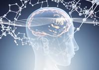 Brain molecular model image [3384156] Brain