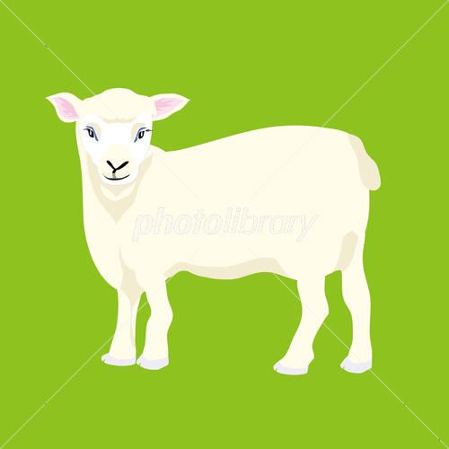 羊のイラスト可愛い白い子羊 イラスト素材 3469673 フォトライブ