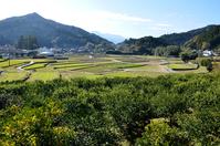 Tokushima Kamiyama landscape Stock photo [3475896] Tokushima