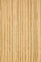 Plate of yellow pine Stock photo [3576613] yellow