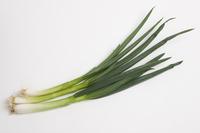 Kujo green onion Stock photo [3584132] Kujo